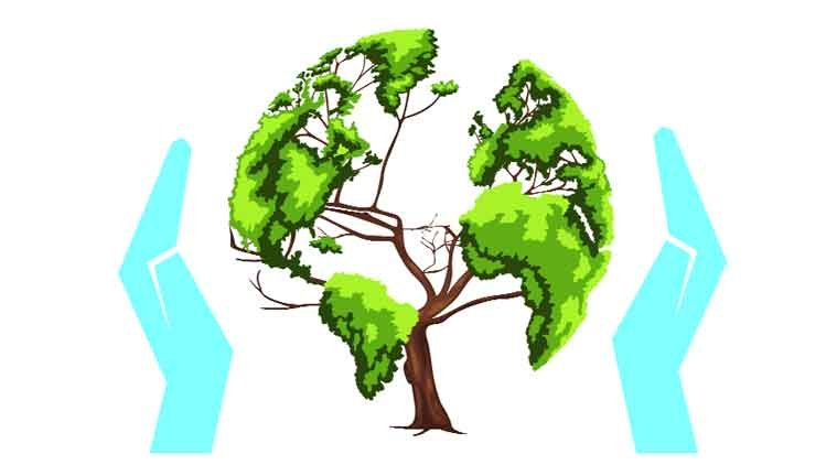 1625964901_35_Essay-On-Save-Forest-For-Students-038-Children-In-Simple