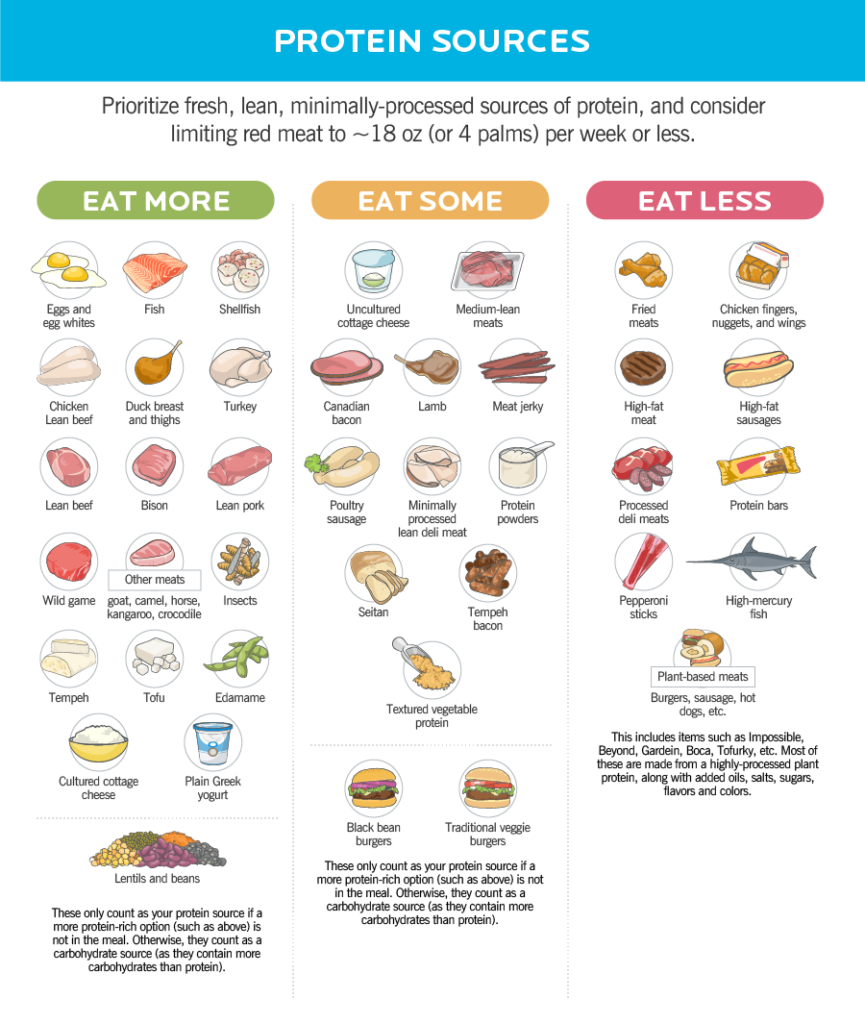 Graphic of various protein sources.