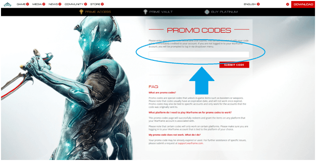 Image Shows the Promo Code Submit Option