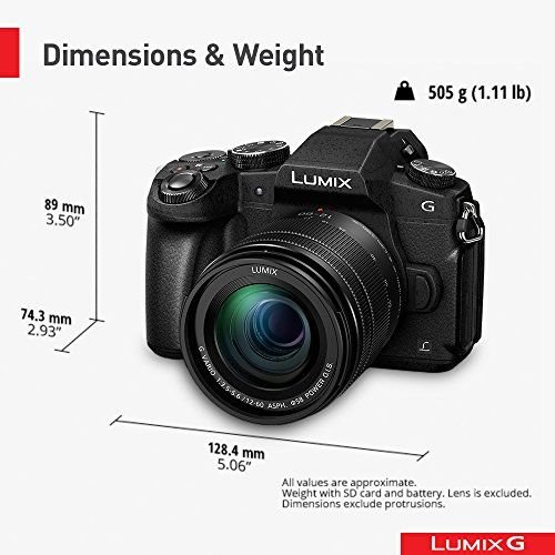 1631484244_417_Is-the-Panasonic-G85-Good-for-Vlogging