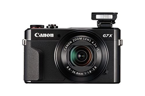 1631485261_480_Is-the-Canon-Powershot-G7X-Mark-II-Good-for-Vlogging