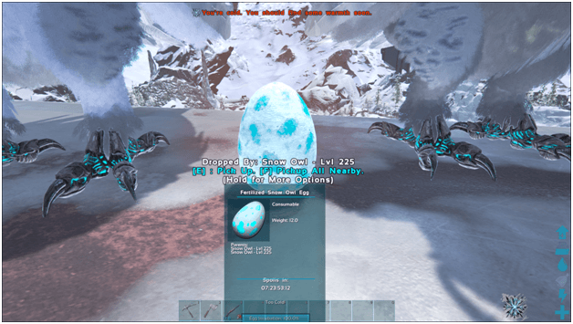 1631489413_403_Ark-Snow-Owl-Guide-Abilities-Controls-Taming-Food-Saddle-Breeding