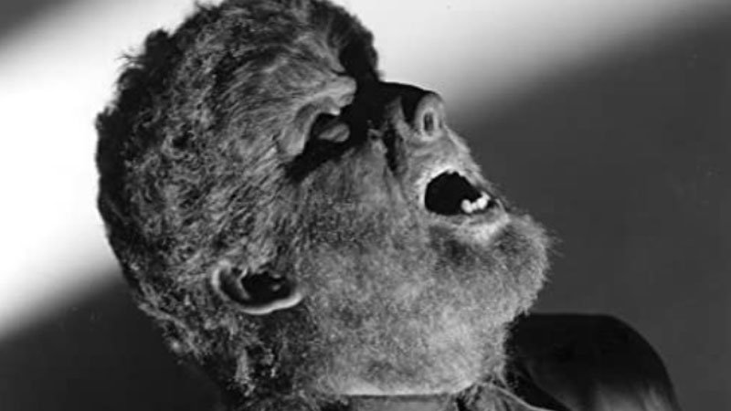 1631606907_317_60-Best-Monster-Movies-Of-All-Time-2021-Update