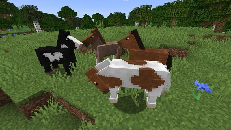 1631695645_355_How-To-Breed-Horses-In-Minecraft-and-Tame-Them