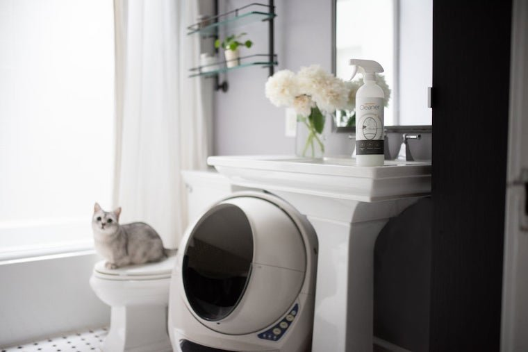 White cat sitting on toilet next to self-cleaning Litter-Robot with Litter-Robot cleaner spray above