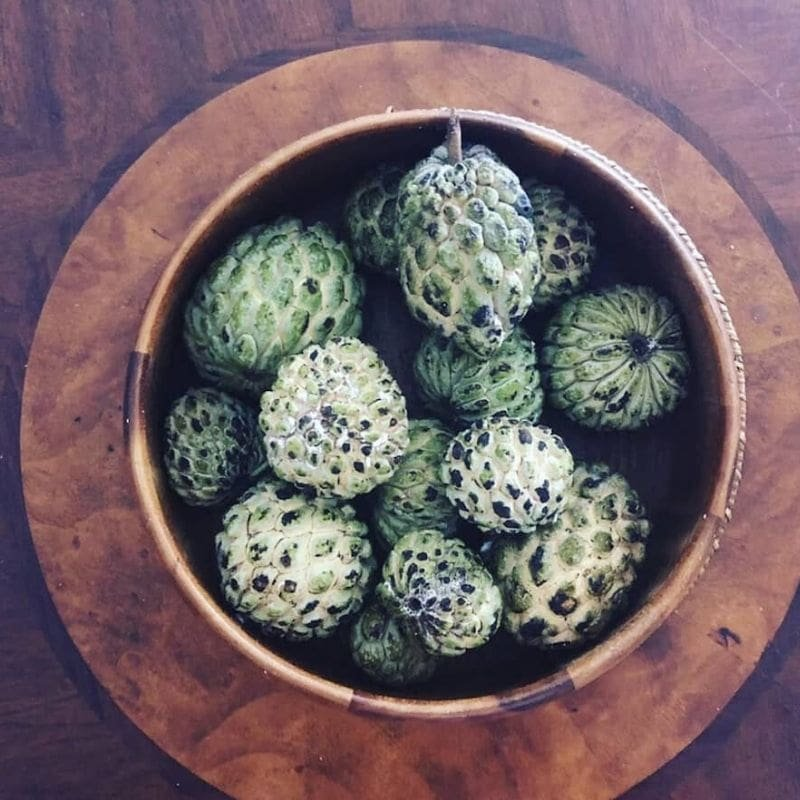 1632461877_731_5-Things-You-Didn039t-Know-About-Sweetsop-Jamaican-Foods