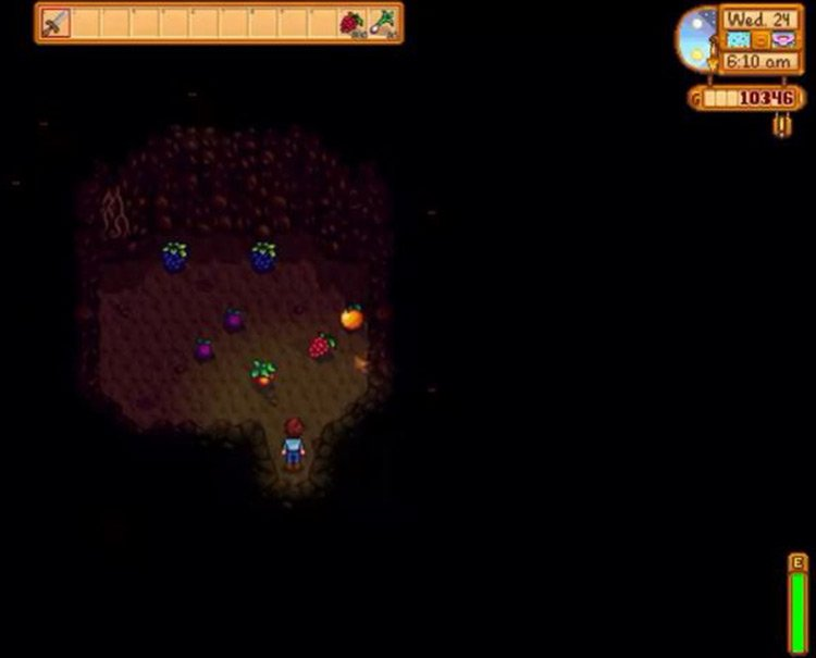 Stardew Valley Fruit Cave with Wild Plums
