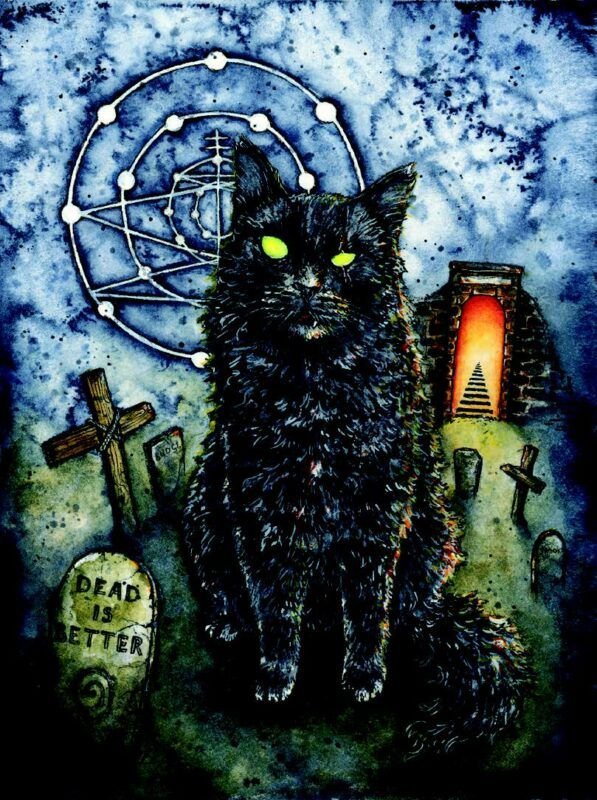 Cool-and-Creepy-Cats