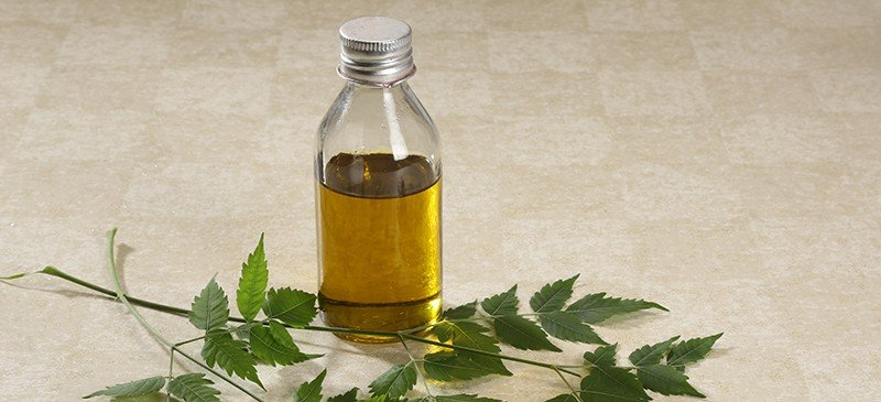 Neem-Oil-for-Skin-and-Plants-How-to-Use-Benefits