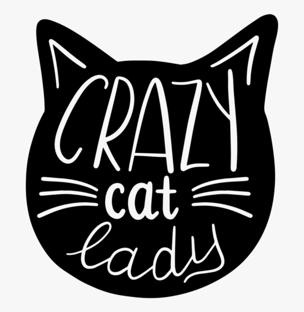 Purrfect-Products-to-Buy-This-Fall