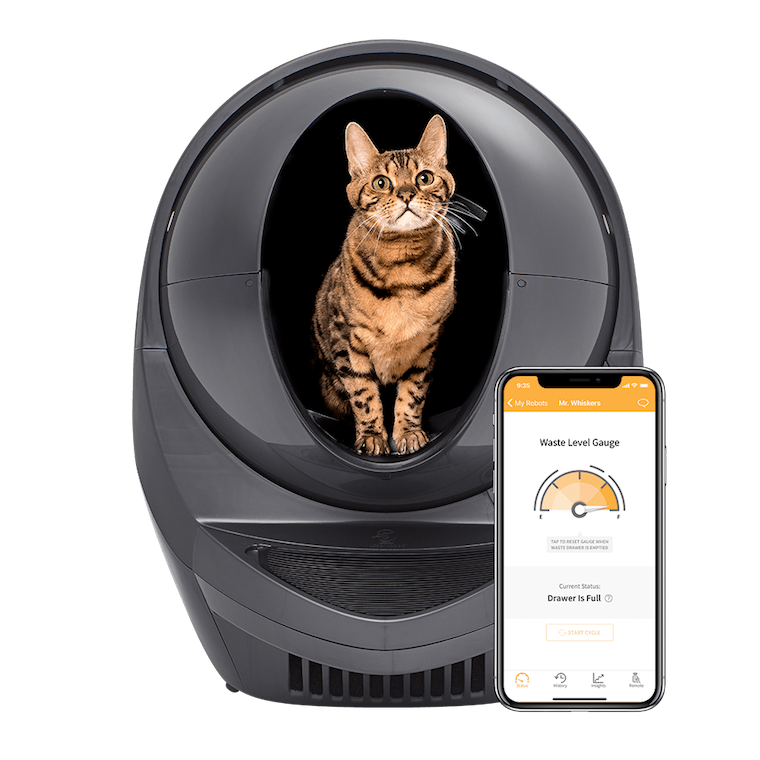 Tiger-striped brown tabby cat in the globe of a grey Litter-Robot 3 Connect cat litter box