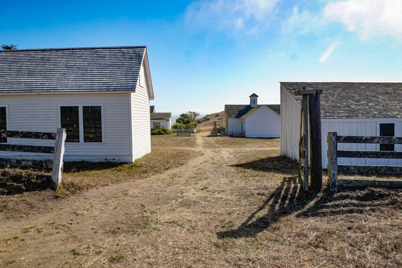 1633304290_668_Tomales-Point-Trail-A-Must-Do-Hike-at-Point-Reyes-National
