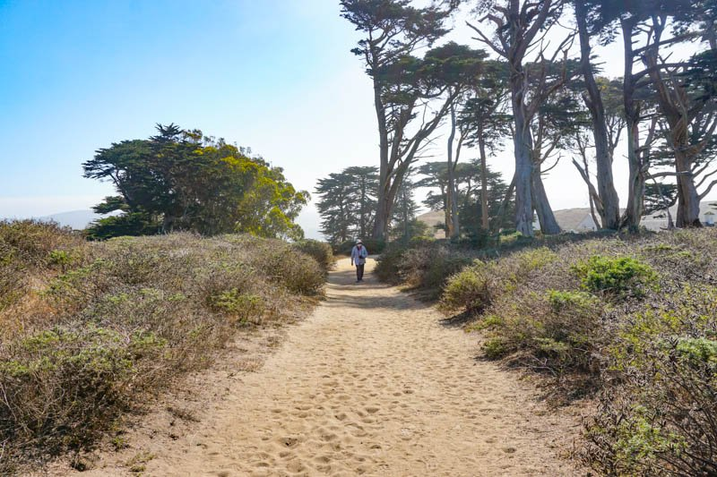 1633304293_364_Tomales-Point-Trail-A-Must-Do-Hike-at-Point-Reyes-National