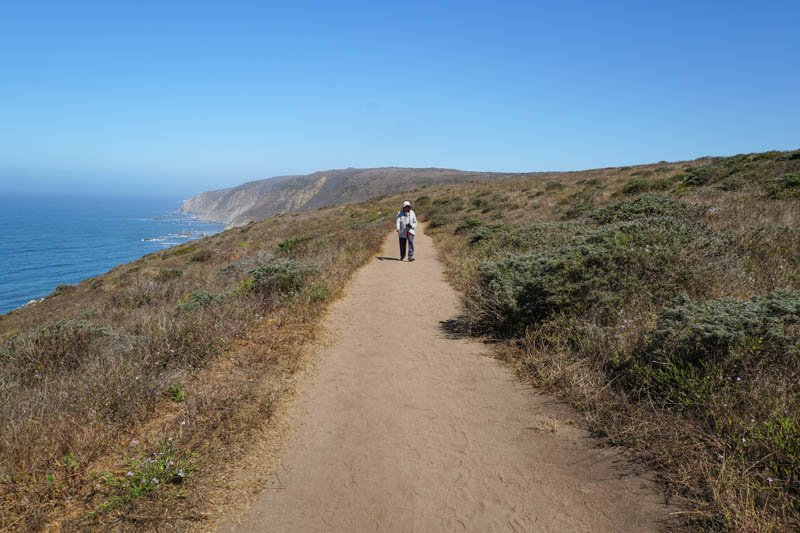 1633304294_120_Tomales-Point-Trail-A-Must-Do-Hike-at-Point-Reyes-National