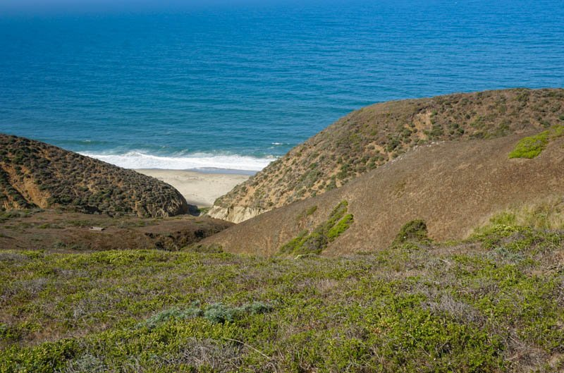 1633304296_538_Tomales-Point-Trail-A-Must-Do-Hike-at-Point-Reyes-National