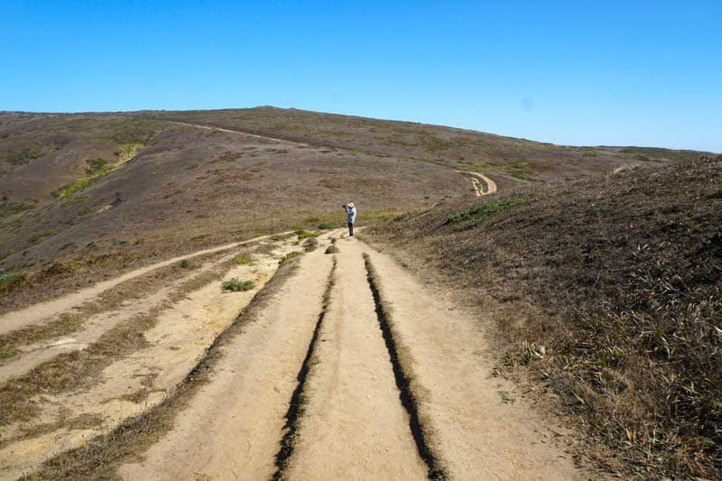 1633304300_219_Tomales-Point-Trail-A-Must-Do-Hike-at-Point-Reyes-National
