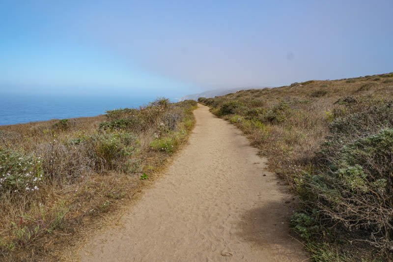 1633304302_914_Tomales-Point-Trail-A-Must-Do-Hike-at-Point-Reyes-National
