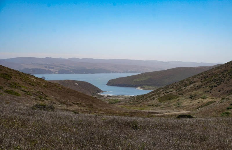 1633304303_416_Tomales-Point-Trail-A-Must-Do-Hike-at-Point-Reyes-National