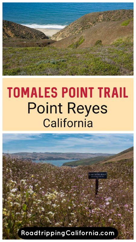 1633304305_732_Tomales-Point-Trail-A-Must-Do-Hike-at-Point-Reyes-National