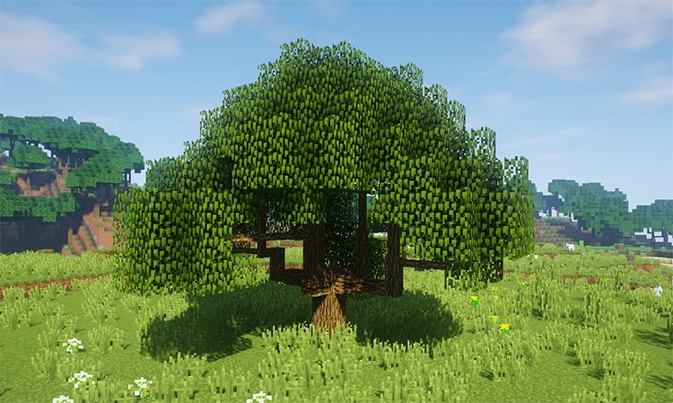 Dynamic Trees mod for Minecraft
