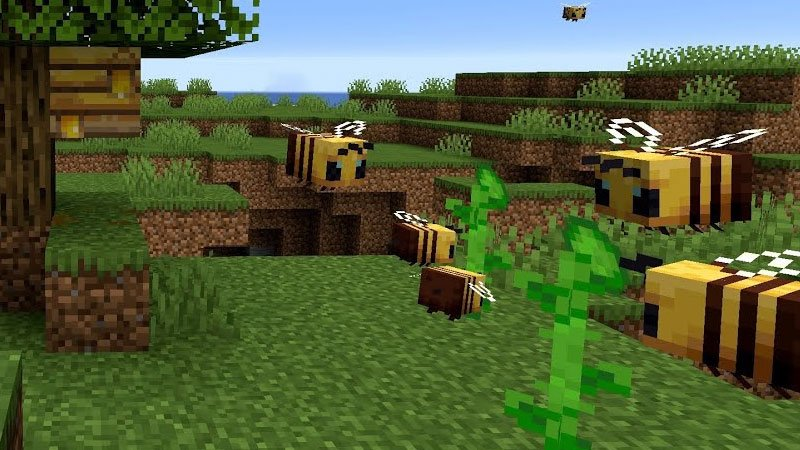 1633638196_481_How-To-Get-Honeycomb-In-Minecraft-A-Simple-Guide